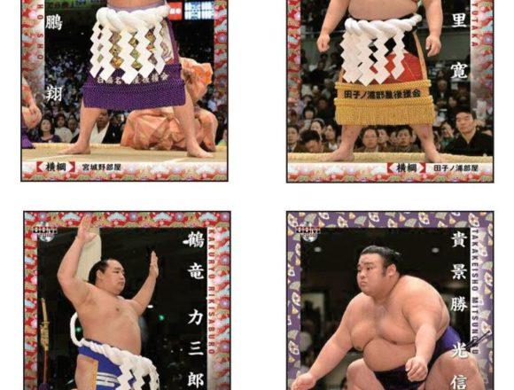 BBM 2019 大相撲カード